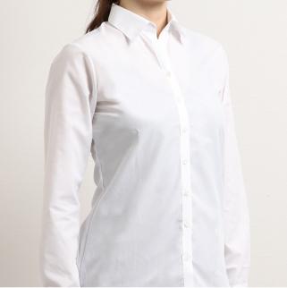 m.f.editorial Basic +「透けにくいshiro-shirts」